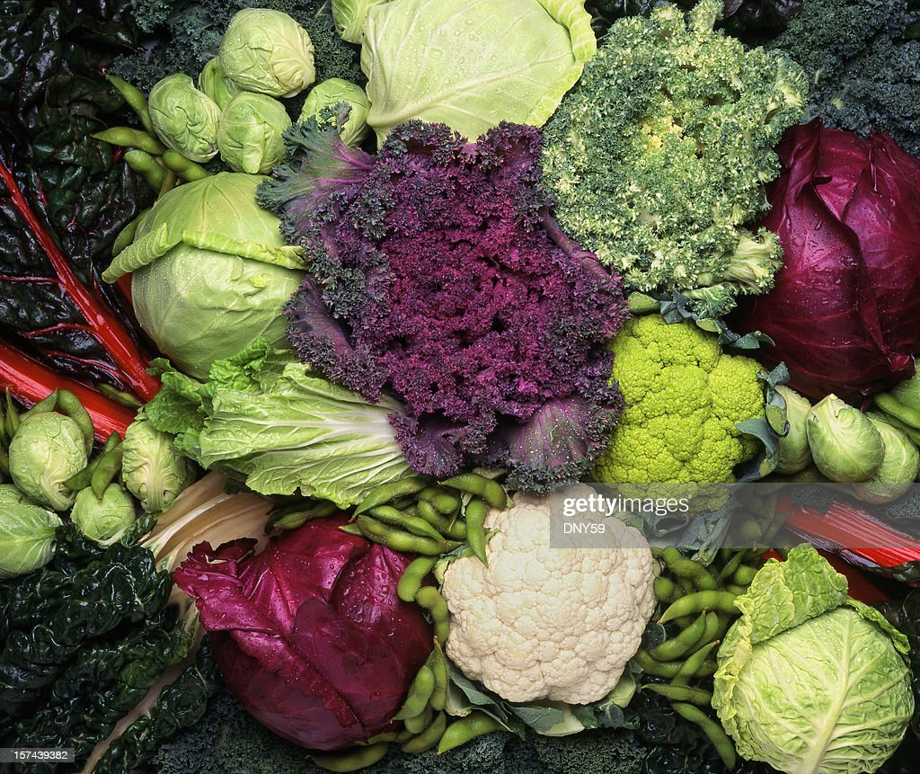Grouping of cruciferous vegetables : Stock Photo