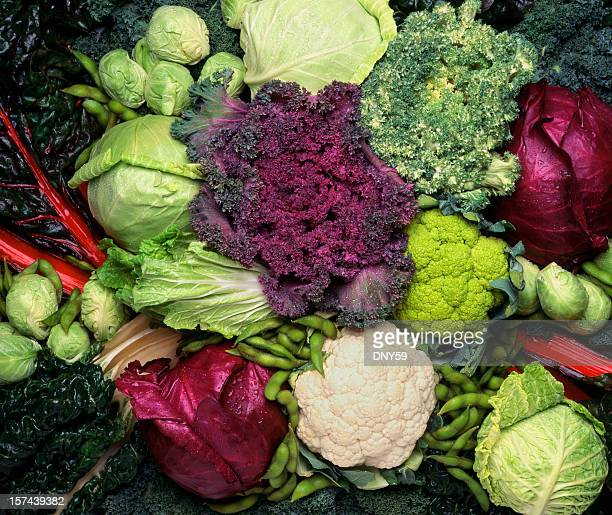 grouping of cruciferous vegetables - kale stock pictures, royalty-free photos & images