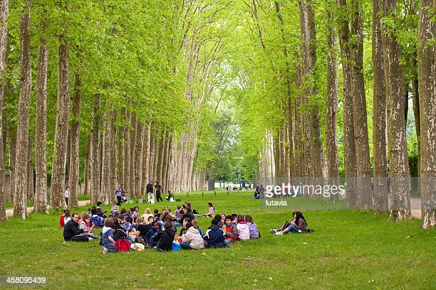 Groups of children having lunch on the nature