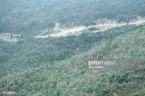 Groups of Hmong men carry massive slabs of sandalwood out of the Hoang Lien Son Nature Reserve in northern Vietnam In a single day they will hike the...