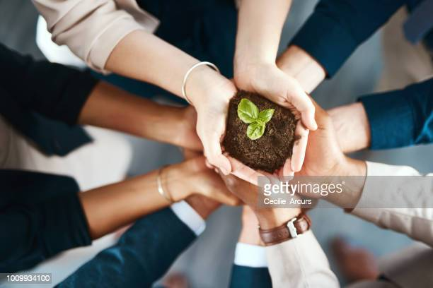 growing a company with their own hands - responsible business stock photos and pictures