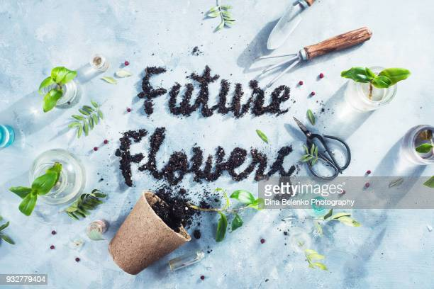 Growing flowers concept with a tiny rake, spade, green plants, Chinese scissors and seedling pot. High key gardening flat lay with lettering made from soil.