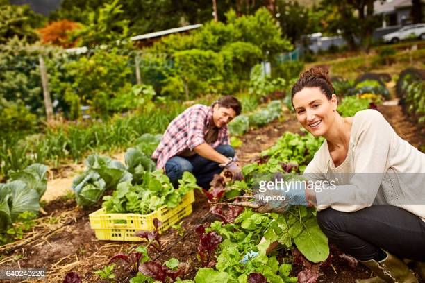 Growing our own vegetables is a labor of love