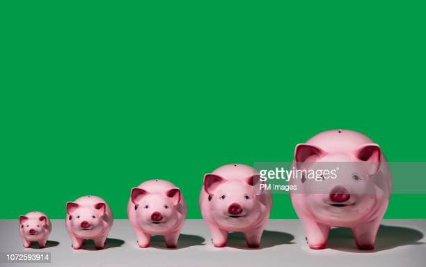 growing piggy banks - finance and economy stock pictures, royalty-free photos & images
