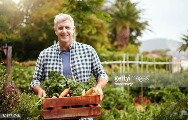cultivar tus propios alimentos es sin duda un ahorro de costo - actividad de agricultura fotografías e imágenes de stock