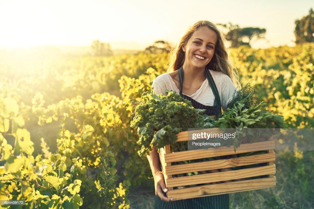 Mejor cultivada y se sabe mejor : Foto de stock