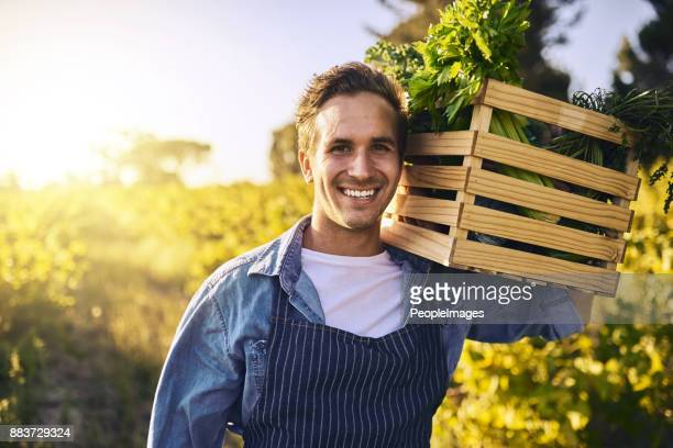 organicamente crescido apenas como deve ser - agricultor - fotografias e filmes do acervo