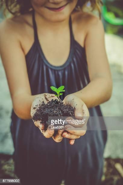 growth - altruismo foto e immagini stock
