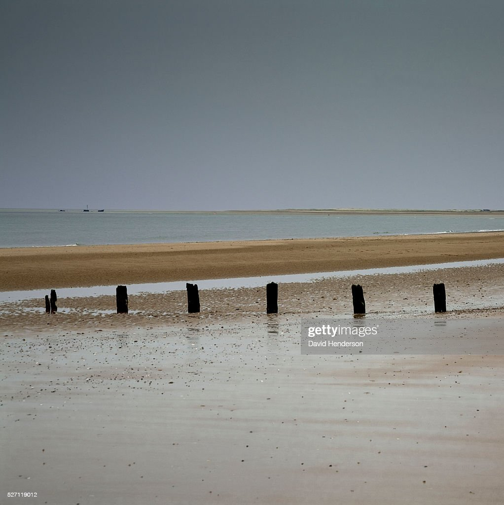 Groyne posts buried in wet sand : Stock Photo
