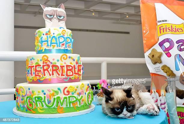 Grumpy Cat Aka Tardar Sauce Attends Cats Grumpiest Birthday Bash At 404 10th Avenue On