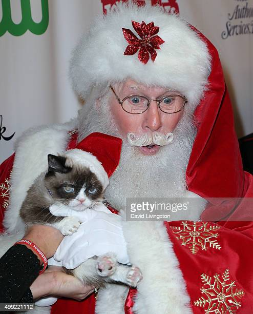 Grumpy Cat and Santa Claus attend the 84th Annual Hollywood Christmas Parade on November 29 2015 in Hollywood California