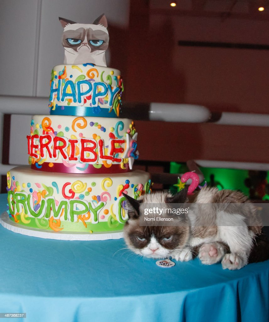 Stupendous Grumpy Cat Attends Grumpy Cats Grumpiest Birthday Bash At 404 Funny Birthday Cards Online Inifofree Goldxyz