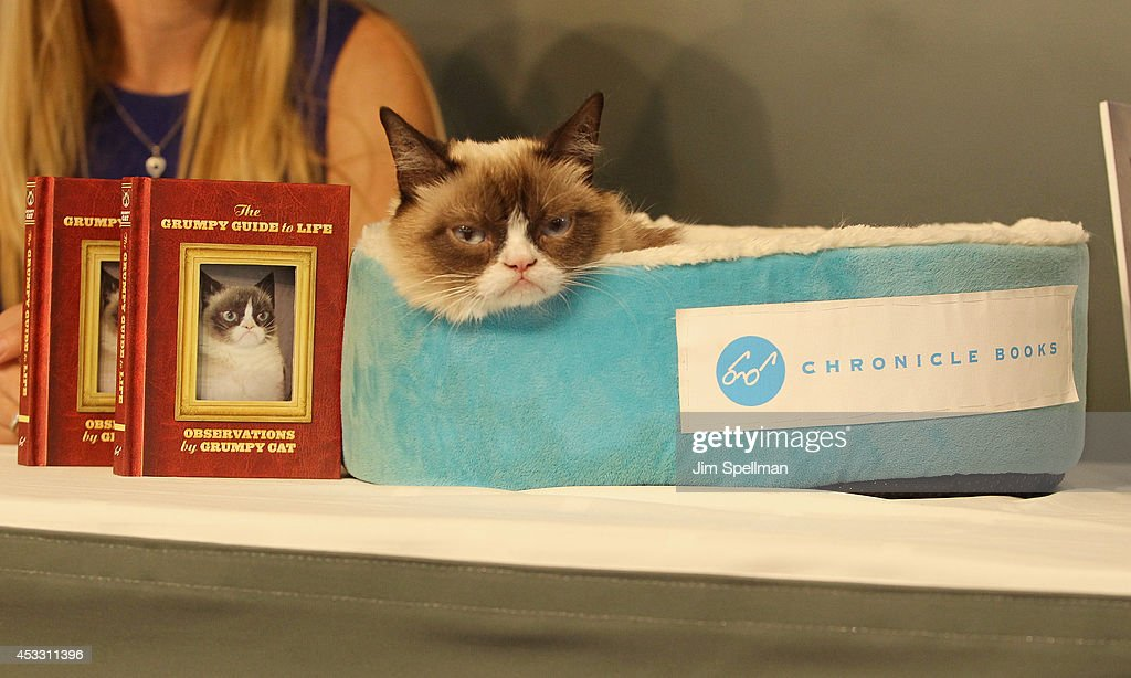 Observations from Grumpy Cat book event at Barnes & Noble Union Square on August 7, 2014 in New York City.