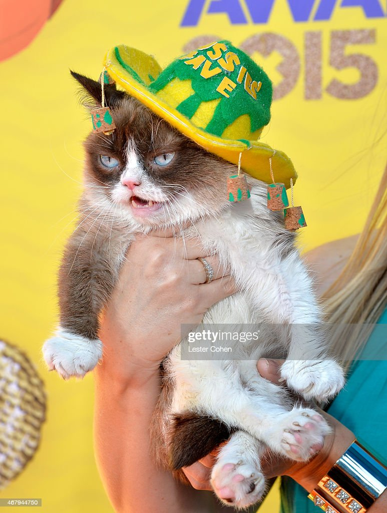 Grumpy Cat attends Nickelodeon's 28th Annual Kids' Choice Awards held at The Forum on March 28, 2015 in Inglewood, California.
