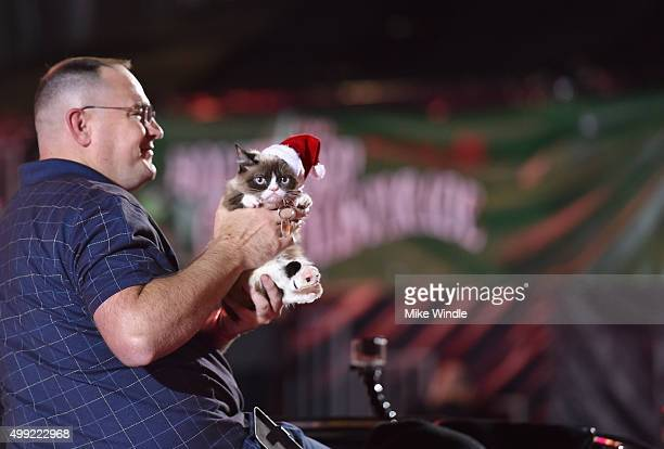Grumpy Cat attends the 2015 Hollywood Christmas Parade on November 29 2015 in Hollywood California