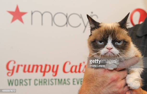 Grumpy Cat Macy's and the San Francisco SPCA Partner with Grumpy Cat to help other pets find homes during the holiday's at the Macy's 28th Annual...
