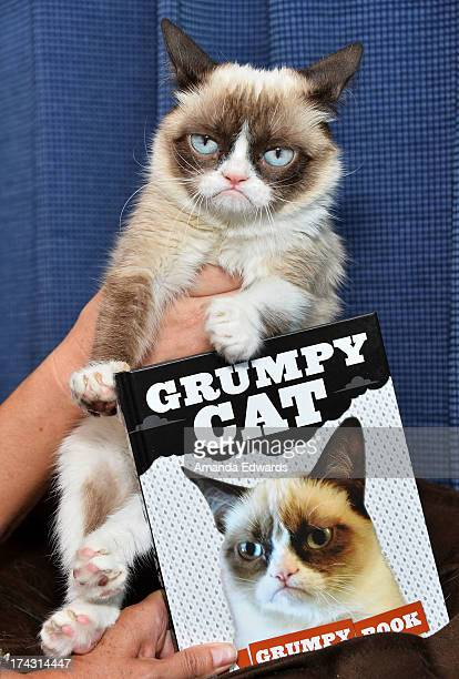 Grumpy Cat makes an appearance at Kitson Santa Monica to promote her new book Grumpy Cat A Grumpy Book on July 23 2013 in Santa Monica California