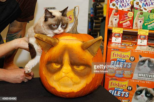 Grumpy Cat, poses with a custom Grumpy Cat pumpkin carving created by sculptor Ray Villafane during the Grumpy Cat Meets First-Ever Grump-O-Lantern...