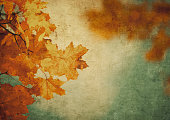 http://www.istockphoto.com/photo/grunge-background-with-autumn-leaves-gm838493542-136453169