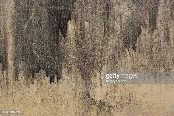 grunge concrete wall background - schmutzig stock-fotos und bilder