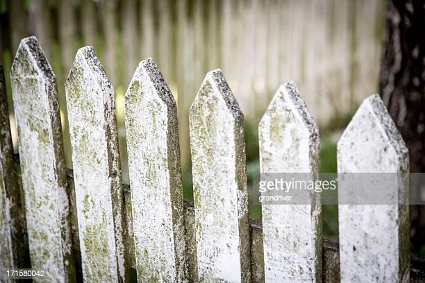 Grunge Picket Fence