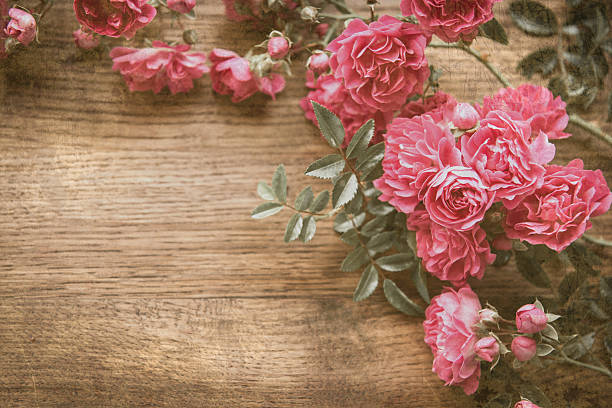 Grunge Texture With Floral Background Vintage Style Romantic Pink Roses