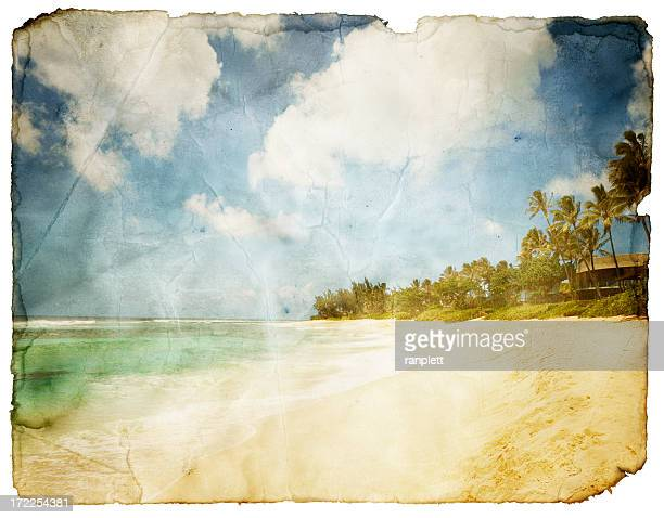 Grungy Tropical Postcard (Clipping Path; XXL)
