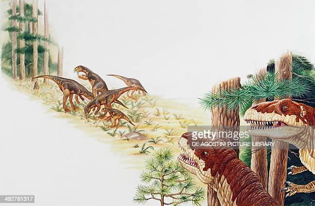 A gruppo of Dryosaurus sp Dryosauridae observed by two Allosaurus fragilis Allosauridae Late Jurassic Artwork by Clive Pritchard