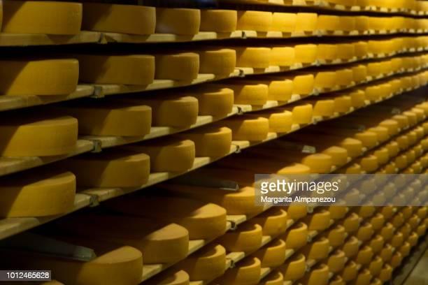 gruyere cheese stored in large quantities - zwitserse kaas stockfoto's en -beelden