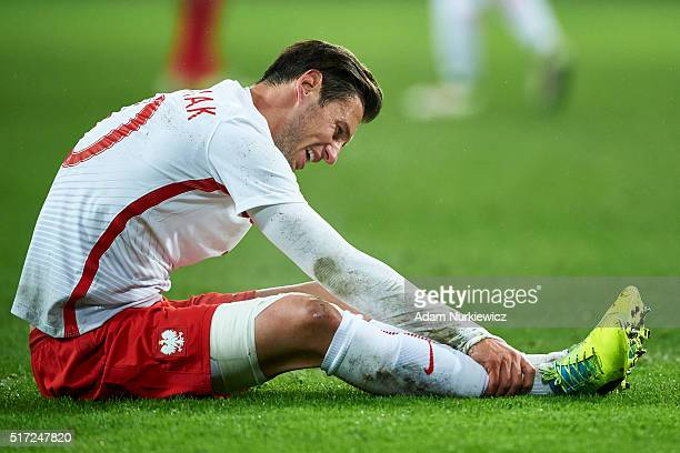 Grzegorz Krychowiak of Poland sits on the pitch during the international friendly soccer match between Poland and Serbia at the Inea Stadium on March...