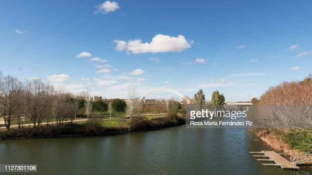 Guadiana River and riverbank on suuny day, Mérida, Extremadura, Spain, Europe