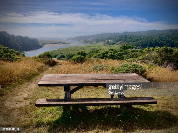 gualala river, mendocino coast - picnic table stock pictures, royalty-free photos & images