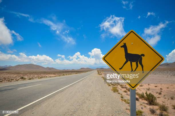 guanaco warning sign, northern argentina. - radicella stock pictures, royalty-free photos & images
