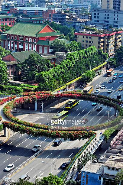 guangzhou flyover,green belt - guangdong province stock photos and pictures
