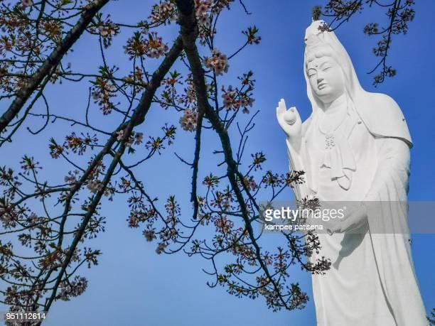 guanyin statue in funaoka,shibata,tohoku,japan. - guanyin bodhisattva stock pictures, royalty-free photos & images