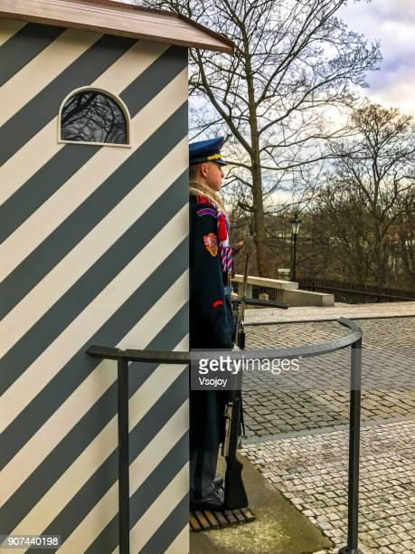 guard at the south of prague castle, czech republic - vsojoy stockfoto's en -beelden