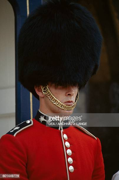 A guard in front of Buckingham Palace London England United Kingdom