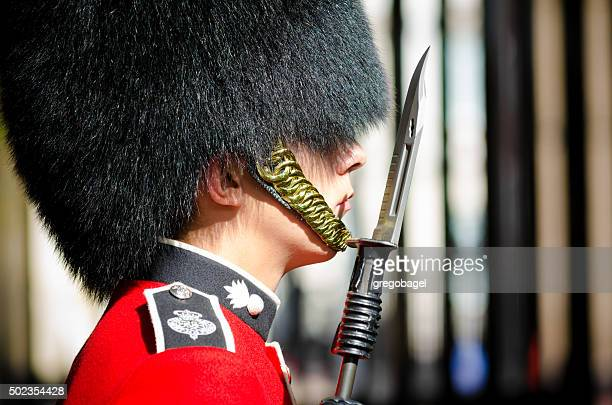 guard outside clarence house in london, england - honor guard stock pictures, royalty-free photos & images