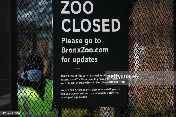 A guard stands at the entrance to the Bronx Zoo on April 06 2020 in New York City A tiger at the zoo has tested positive for COVID19 the Wildlife...