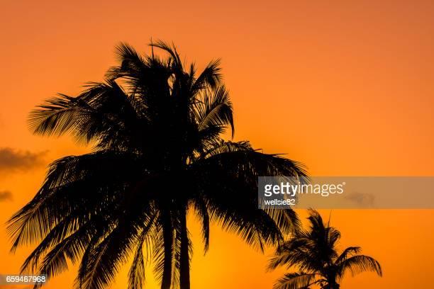 Guardalavaca sunset