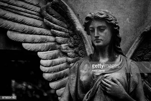 guardian angel - place concerning death stock pictures, royalty-free photos & images