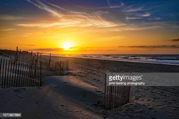 guardians of the beach - north carolina stock pictures, royalty-free photos & images
