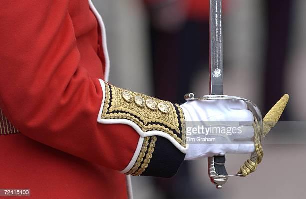 Guardsman at Windsor Castle during the Garter ceremony Windsor United Kingdom
