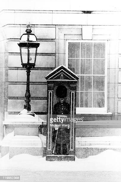 A guardsman on duty in a sentry box at Buckingham Palace in the snow London England Britain 1982