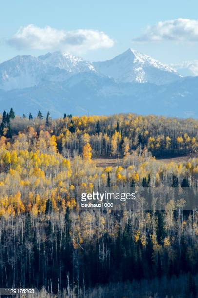 guardsman pass and aspens at peak color, park city, utah in the colorado rocky mountains - park city utah stock pictures, royalty-free photos & images
