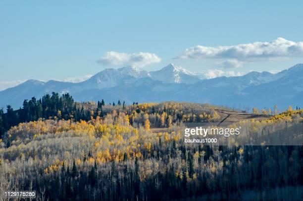 近衛兵のパスとアスペンズ アット パークシティ、ユタ州のコロラド州ロッキー山脈のピーク色 - ユタ州 パークシティ ストックフォトと画像