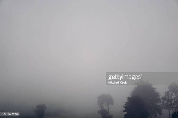 guatemala series 20/25 - この撮影のクリップをもっと見る 2025 stock pictures, royalty-free photos & images