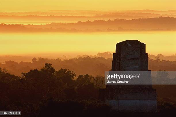 guatemala,el peten,tikal,temple iii and rainforest at sunset - guatemala stock pictures, royalty-free photos & images