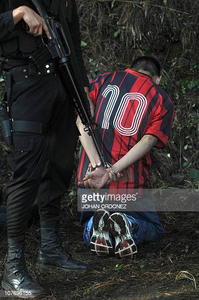 A Guatemalan police officer custodies one of four suspects allegedly belonging to los Zetas Mexican drug cartel arrested in Coban Alta Verapaz 220km...
