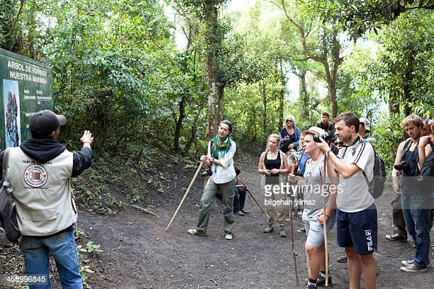 guatemalteco guía de recorrido - guatemala fotografías e imágenes de stock